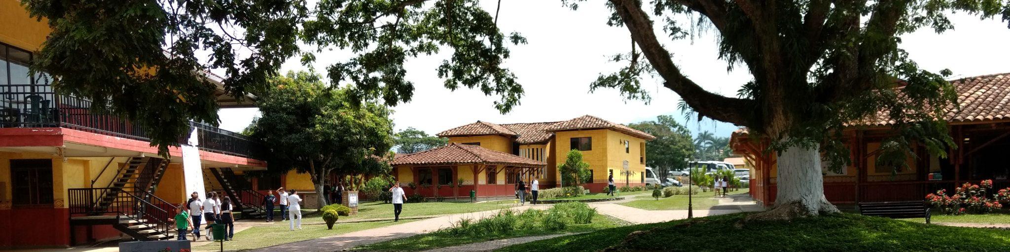 Liceo Pino Verde